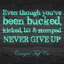 Even though you've been bucked off, kicked hard, bit at, and stomped down... NEVER GIVE UP