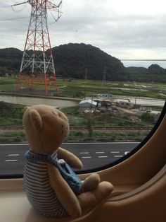 Ferris Wheel, Fair Grounds, Teddy Bear, Travel, Viajes, Teddy Bears, Destinations, Traveling, Trips