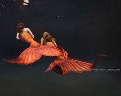 силиконовый хвост русалки купить: 13 тыс изображений найдено в Яндекс.Картинках