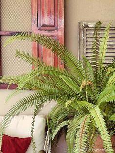 Repurpose-a-Spanish-Window to Outdoor Wall Decor