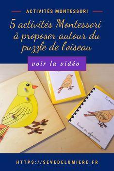 Je vous fais la présentation de 5 activités sur le puzzle dee l'oiseau Montessori ! Découvrez ma nouvelle vidéo où je vous montre comment utiliser lee puzzle de l'oiseau avec notamment des cartes de nomenclature ! Cliquez pour en savoir plus ! #puzzlemontessori #matérielmontessori #puzzleenfant Puzzle Montessori, Alternative, Montessori Education, 6 Year Old, Birds