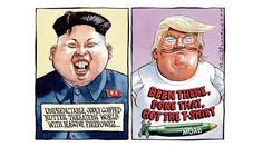 Peter Brookes | Comment | The Times & The Sunday Times