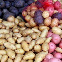The start of something great! #UncontainedLife #FarmersMarket #FarmToTable #ExploreLocal #LocalBusiness #potato http://ift.tt/12tBzAU