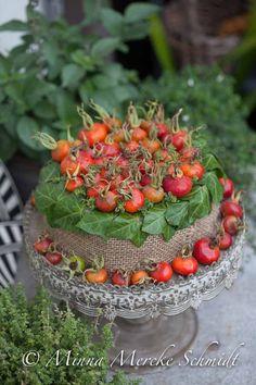 blomsterverkstad | Livet med trädgård, uterum och växter | Sida 14