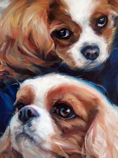 Yin&Yang, Spaniels HARLAN & LAYLA, custom Pet Portrait Oil Painting by puci (detail of larger painting)