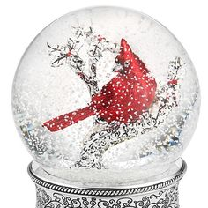 Personalized Cardinal Water Globe , Add Your Message