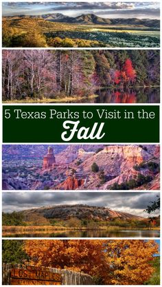 5 Texas Parks You Have to See this Fall Season for Color - - We have found 5 Texas Parks to visit this fall for their brilliant fall foliage. These parks are all over the state. Make a plan to see one this fall! Camping In Texas, Texas Roadtrip, Texas Travel, Travel Usa, Van Camping, Camping Cabins, Hiking Texas, Dallas Travel, Canada Travel