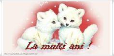 La multi ani! Teddy Bear, Toys, Romania, Animals, Activity Toys, Animales, Animaux, Clearance Toys, Teddy Bears