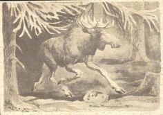 Kunstnerkort Ridley Borchrevink. Elg. Utg Oppi brukt 1940-tallet