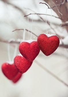 / hearts /