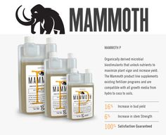 mammothmicrobes