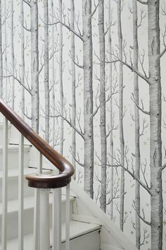 16 Ideas For Birch Tree Wallpaper Hallway