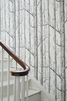 16 Ideas For Birch Tree Wallpaper Hallway