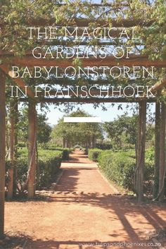 'Twas a beautiful sunny day in Cape Town, South Africa when we decided to head out to Franschhoek to explore the much heard about gardens of Babylonstoren. Greenhouse Restaurant, Down The River, Beautiful Fruits, Table Mountain, Places Of Interest, Road Trips, Places To See, South Africa, Cape