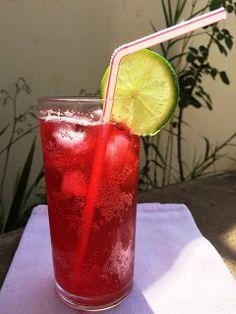Le Garb: Refrigerante caseiro - vários sabores