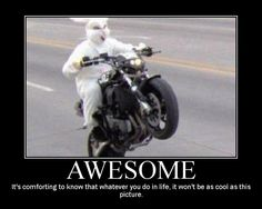 awesome bunny