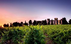 ~ A Luxury Hotel near Avignon Chateauneuf Du Pape, Provence, Country Roads, Luxury, World, Places, Travel, Outdoor, Jet Set