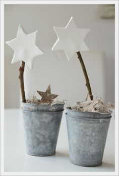 Christmas star trees in little zinc buckets