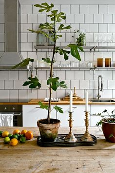 White wood kitchen table 15 ideas for 2019 Home Interior, Decor Interior Design, Kitchen Interior, Interior Design Living Room, Interior Decorating, Decorating Ideas, Kitchen Tiles, New Kitchen, Kitchen Dining