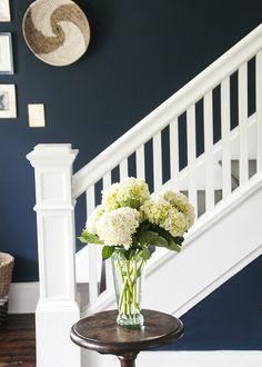 beginners blooms- live the navy walls Dark Blue Walls, Navy Walls, Dark Blue Hallway, Pink Hallway, Coastal Living Rooms, Living Room Decor, Living Spaces, Hydrangea Arrangements, Flower Arrangement