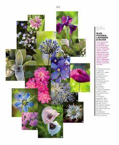 53 Best Color Wheel Images Color Wheel Color Flower Garden