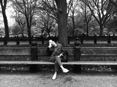 Central Park , New York, 2016