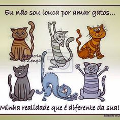 . Cat Plants, Animals, Pet Cats, Cat Stuff, Amor, Dog Cat, Windows, Doll, Kittens