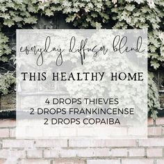 Essential Oils For Colds, Essential Oils Guide, Essential Oil Diffuser Blends, Young Living Essential Oils, Living Oils, Diffuser Recipes, Faith, Yl Oils, Doterra Oils