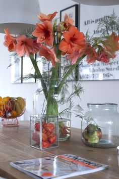 &SUUS: Flower Friday: Amaryllis | ensuus.blogspot.nl | My Livingroom |
