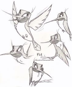 Flit - Sketches