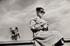 """Audrey Hepburn photographed with her Yorkie, Mr. Famous during a break in filming """"The Unfogiven"""" Photo by Inge Morath / Durango, Mexico (February, Audrey Hepburn Mode, Inge Morath, Durango Mexico, Knit Art, Vintage Knitting, Free Knitting, Knitting Patterns, Rare Photos, Girls Be Like"""
