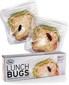 Lunch bugs!