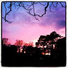 Sunset on campus at Swansea University in Wales