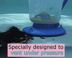 US$ 58.89 - Swimming Pool Vacuum Cleaner - m.cccinlife.com Pool Leaf Vacuum, Swimming Pool Vacuum Cleaner, Pool Cleaning, Spring Cleaning, Large Fish Tanks, Pool Maintenance, Vacuum Bags, Under Pressure, Pool Ideas