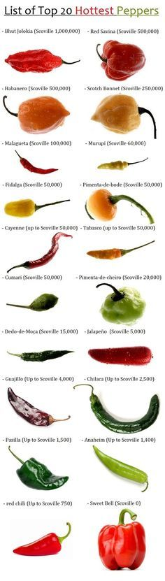 Peppers by Heat Scale : Bhut Jolokia (Scoville Red Savina (up to Scoville Habanero (Scoville Scotch Bonnet (Scoville Malagueta (Scoville Murupi (Scovi… Cooking Tips, Cooking Recipes, Healthy Recipes, Healthy Food, Hottest Chili Pepper, Food Charts, Stuffed Hot Peppers, Fruits And Veggies, Mexican Food Recipes