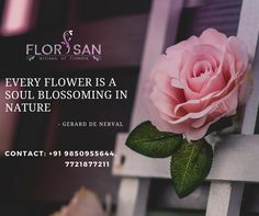 Put a smile on your loved ones face by ordering a flower bouquet from Florisan. Visit on: http://florisan.in/ #Gifts #Florisan #Flowers #Cakes
