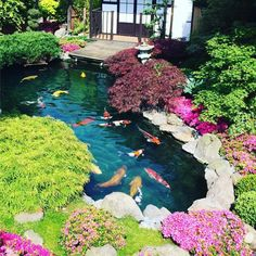 14 Fish Pond Design Ideas Create Your Own Heaven 19 - homegrowmart
