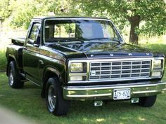 1980 Ford F100 Stepside for sale in Canfield, ON,