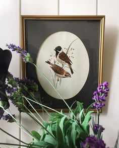 Vintage Print of Swallows signed 1954 ~ $25. The matting has some slight waving at the bottom 33x27.5cm Please comment sold to purchase. Pick up or courier/post available. Paddington Brisbane.  #instasale #interiors #brisbane #brisbanestyle #vintage #art  #vintageforsale #paddingtonbrisbane #interiordesign #gallerywall #interiordecorating #home #collector #collectables #collections #art #clusterwall #swallows #birdprint