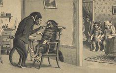 Monkey dentist examining cat patient - dentist's office - old postcard