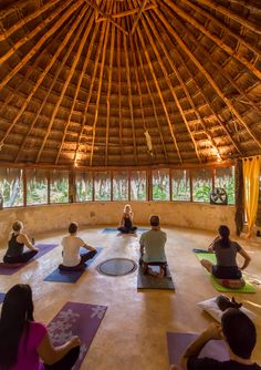 The Riviera Maya can be overwhelming, if you're looking to take a break and do some yoga, you should join Frida Costa on a private yoga tour to the jungle and then go scuba diving  in one of the popular cenotes that surrounds the area. #BoutiqueTravel #WellnessTravel #RivieraMaya #BoutiqueTravelMexico
