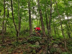 Plenty of hair raising descents and gnar action at the STAB trails on Mt. Ascutney in Vermont.