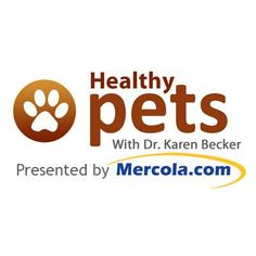 Holistic vet Dr. Karen Becker gives you invaluable information and encouragement to help improve pet health, regardless of age or health history. http://healthypets.mercola.com/sites/healthypets/archive/2010/09/14/false-beliefs-in-pet-care-for-aging-pets.aspx