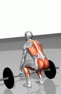 deadlifts!