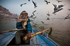 A man pilots a boat through a flock of birds on the Ganges River near the city of Varanasi in India.