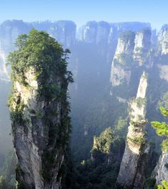 Les monts Tianzi de Zhangjiajie, Chine.