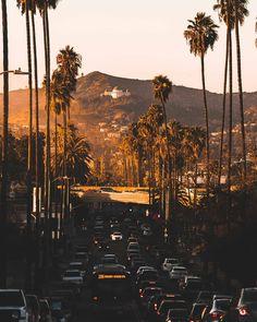 "We Love America ® on Instagram: ""Los Angeles, California 🌅🌴 • • • • • #manhattanbeach #huntingtonbeach #santamonica #santamonicapier #venicebeach #oceanside #newportbeach…"" California Love, Los Angeles California, Instagram Beach, Huntington Beach, Venice Beach, Newport Beach, Santa Monica, Summer Beach, San Diego"