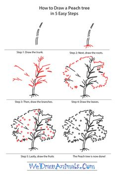 how to draw trees step by step - Google Search