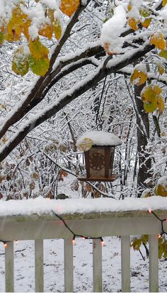 New Country Bird Houses Ana Rosa Ideas I Love Snow, I Love Winter, Winter Snow, Winter Time, Winter Christmas, Winter Magic, Winter's Tale, Winter Scenery, Snow Scenes