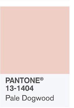Pantone 2017 - Pale Dogwood